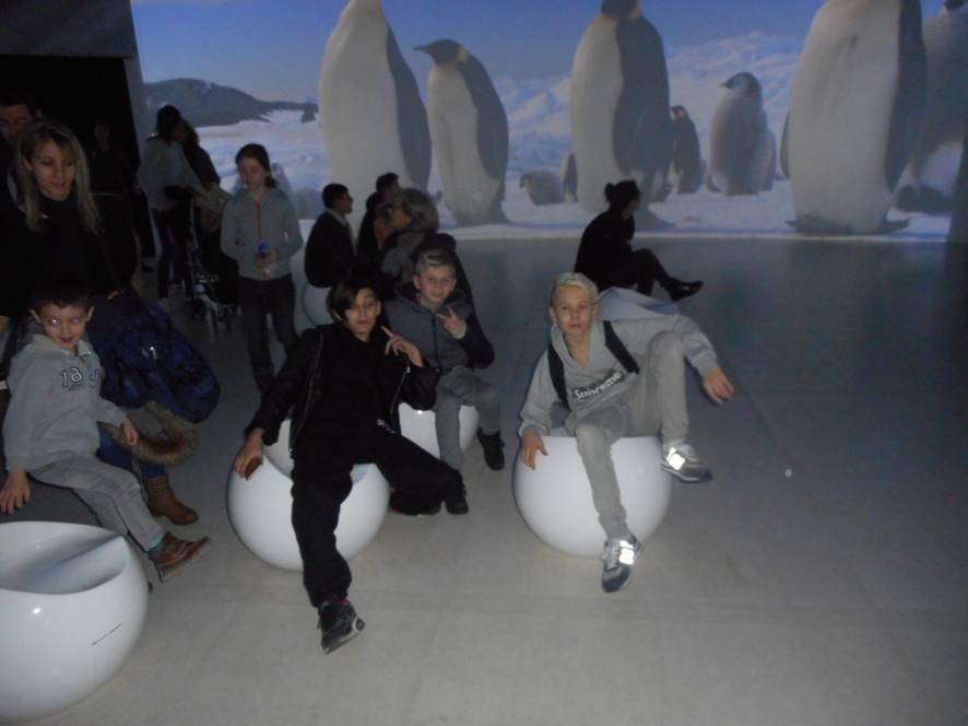 Exposition Antartica au musée des confluences (enfants de l'aide aux devoirs)